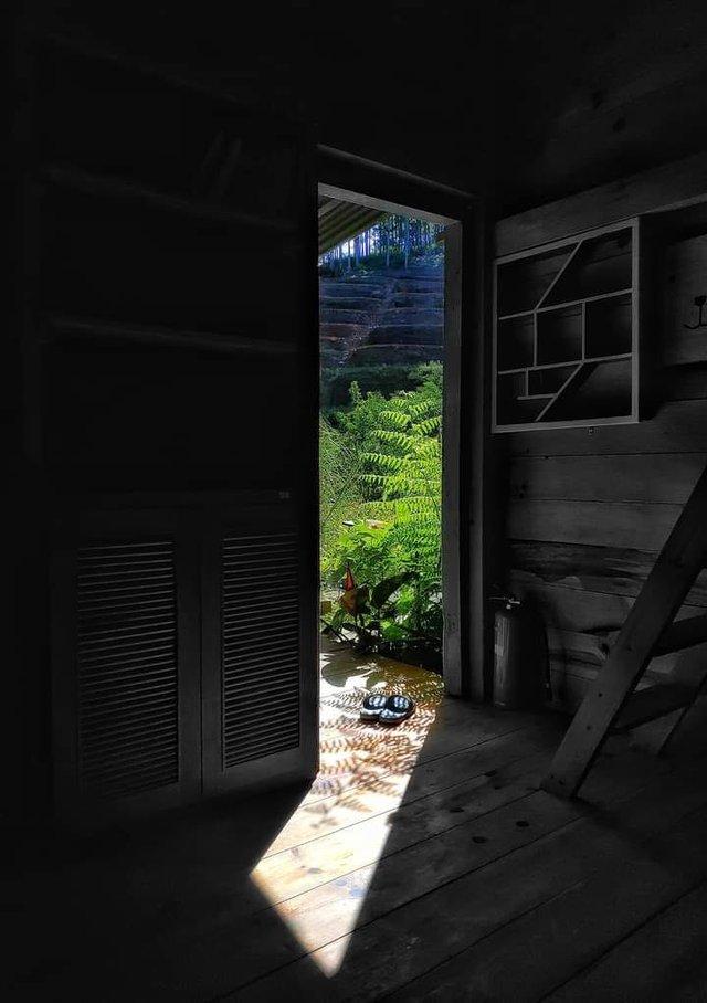 Chàng trai bỏ du học về Đà Lạt dựng ngôi nhà gỗ xinh xắn, làm nông trại và kể câu chuyện thời thanh xuân của riêng mình - Ảnh 20.