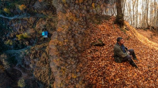 Người đàn ông bỏ phố lên rừng, sống tránh xa công nghệ, chỉ lâu lâu xuống núi thi chạy marathon - Ảnh 1.