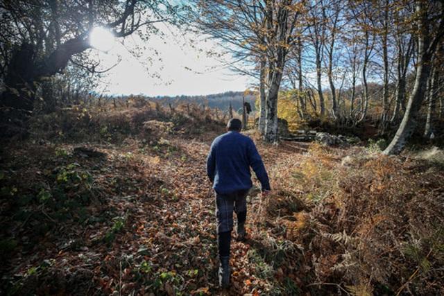 Người đàn ông bỏ phố lên rừng, sống tránh xa công nghệ, chỉ lâu lâu xuống núi thi chạy marathon - Ảnh 4.