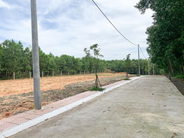 Hợp long cầu vượt nút giao đường 319 với cao tốc Tp.HCM - Long Thành - Dầu Giây, đất nền Nhơn Trạch rục rịch trở lại - Ảnh 2.