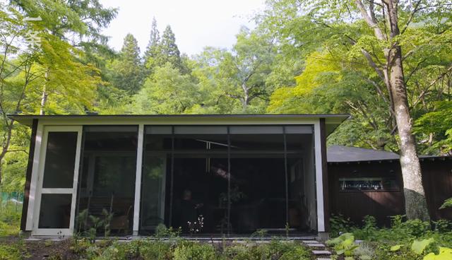 """Nữ nhiếp ảnh gia 65 tuổi người Nhật vào rừng xây nhà, ở một mình, chơi với mèo: """"Phụ nữ phải tự lập, sống cho bản thân chính là sự nghiệp cả đời""""!  - Ảnh 2."""