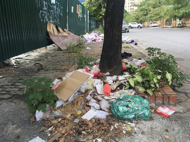 Hàng loạt bãi rác tự phát gây ô nhiễm đường phố Hà Nội - Ảnh 7.