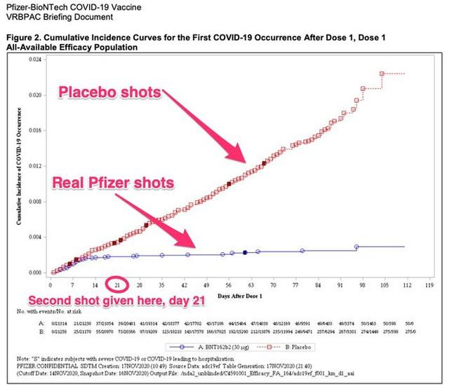 Biểu đồ này cho thấy rõ vắc-xin COVID-19 hiệu quả đến nhường nào - Ảnh 1.