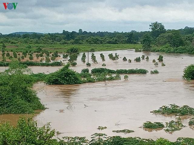 Mưa lớn gây ngập lụt, thiệt hại nặng nề tại Đăk Lăk - Ảnh 4.