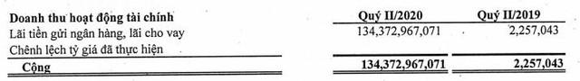 NED báo lãi quý 2 đạt 105 tỷ đồng cao gấp 40 lần cùng kỳ - Ảnh 1.