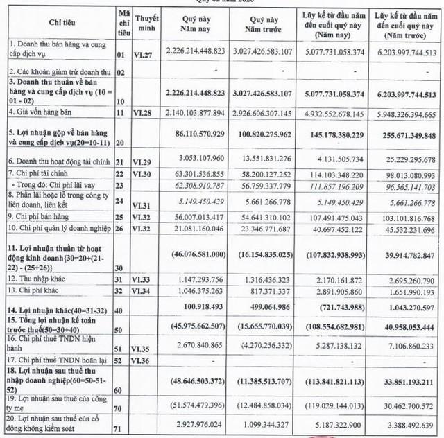 Thanh Lễ (TLP): Quý 2 báo lỗ thêm 48 tỷ đồng - Ảnh 1.