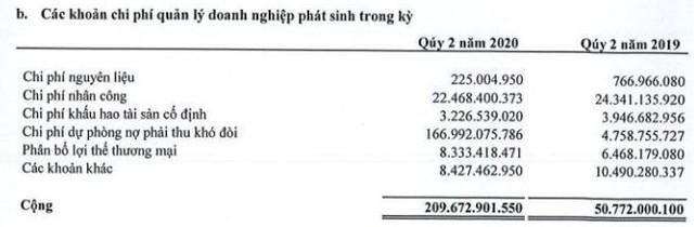 Đức Long Gia Lai (DLG): Quý 2 lỗ lớn 213 tỷ đồng - Ảnh 1.