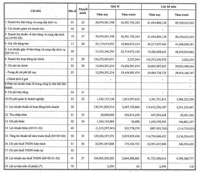 NED báo lãi quý 2 đạt 105 tỷ đồng cao gấp 40 lần cùng kỳ - Ảnh 3.