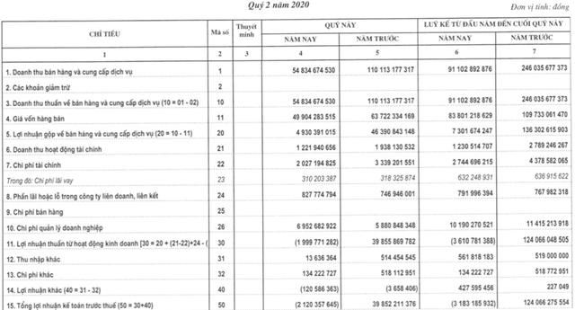 Thuỷ điện Vĩnh Sơn – Sông Hinh (VSH): Doanh thu giảm sút, nửa đầu năm 2020 lỗ 3 tỷ trong khi cùng kỳ lãi hơn 110 tỷ - Ảnh 1.