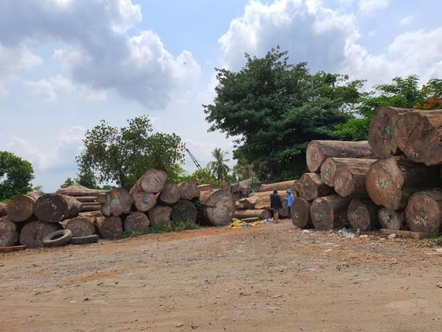 Thanh tra TPHCM kiến nghị xử lý tình trạng xẻ thịt đất công viên - Ảnh 2.