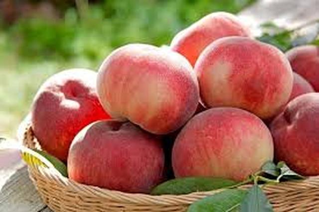 4 loại thực phẩm vàng giúp chị em bổ thận, dưỡng âm, tăng cường sức đề kháng và đẩy lùi tình trạng lão hóa - Ảnh 5.