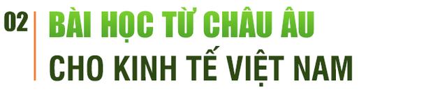 """GS.TS Nguyễn Đức Khương: Ứng xử với dịch bệnh phải kiên quyết nhưng để khôi phục kinh tế thì phải linh hoạt và """"sống chung với dịch"""" - Ảnh 4."""