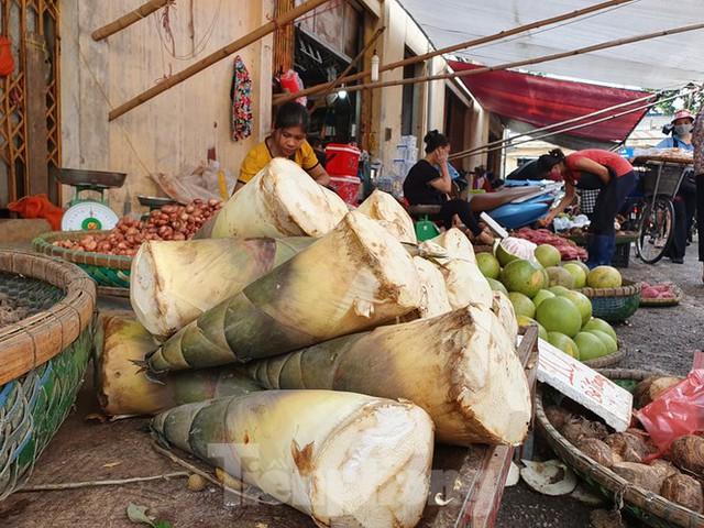 Măng rừng vào mùa tươi ngon, ngập tràn chợ Hà Nội - Ảnh 1.