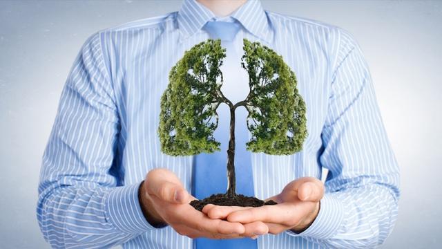 Đông Y ví phổi như lá chắn của cơ thể, nắm chắc 3 nguyên tắc dưỡng sinh này, biến chúng thành thói quen hàng ngày thì cả đời không lo ốm - Ảnh 1.