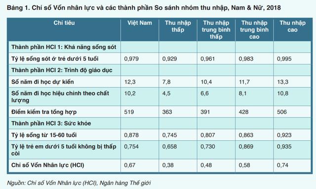 World Bank: Việt Nam nỗ lực trở thành con rồng trỗi dậy ở châu Á cả về kinh tế, xã hội và giáo dục - Ảnh 1.