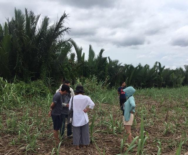 Bỏ ra 600 triệu đồng mua miếng đất đồng không mông quạnh ở Nhơn Trạch, sau 3 năm nhà đầu tư này bán ra lời gấp gần 20 lần - Ảnh 1.