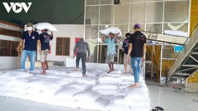 Lúa gạo tăng giá, doanh nghiệp và nông dân ĐBSCL phấn khởi. - Ảnh 3.