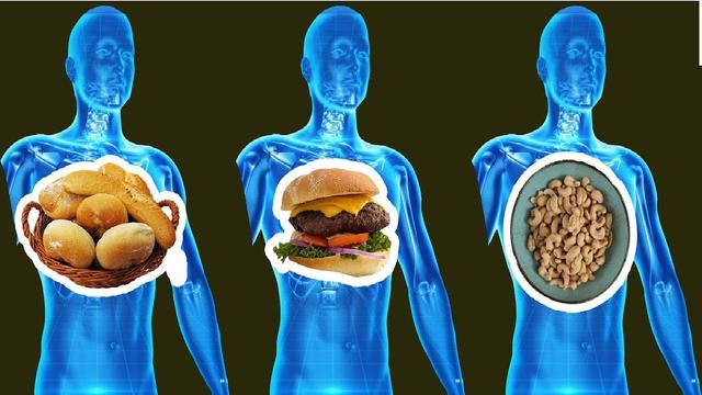 Thức ăn tồn đọng trong dạ dày bao lâu trước khi được tiêu hóa hết? Bí mật này sẽ giúp bạn sắp xếp một chế độ ăn uống hoàn hảo - Ảnh 2.