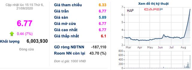 Cổ phiếu bỗng kịch trần 10 phiên với thanh khoản đột biến, Hapaco (HAP) lên tiếng phủ nhận không tác động lên giá thị trường - Ảnh 1.