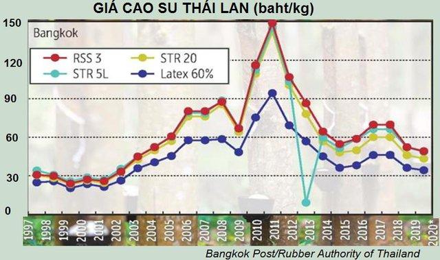 Triển vọng ảm đạm của ngành cao su Thái Lan  - Ảnh 2.