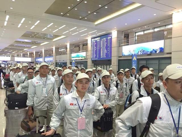 Lao động tại Hàn Quốc hết hạn visa được chuyển sang làm việc thời vụ - Ảnh 1.