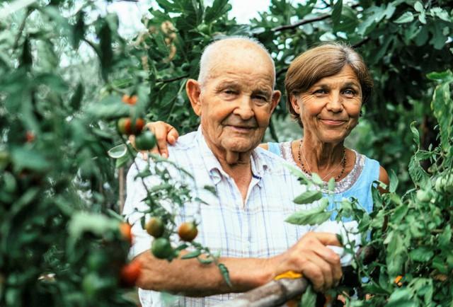 Bí quyết của những người sống thọ trên 100 tuổi: Ngoài ăn uống lành mạnh, tập thể dục đều đặn thì còn 1 điều quan trọng này - Ảnh 2.