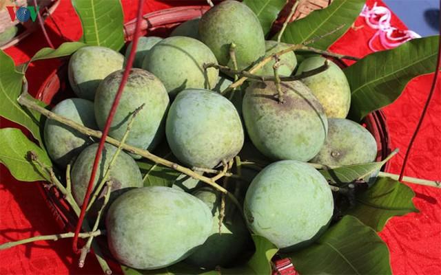 Người dân Sơn La thu nhập hàng tỷ đồng mỗi năm nhờ cây ăn quả - Ảnh 1.