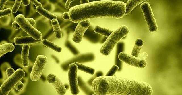 Bác sĩ Trần Văn Phúc cảnh báo độc tố của vi khuẩn trong pate Minh Chay khiến 9 người nhập viện: Hãy tránh xa botulinum vì đó là chất độc khủng khiếp nhất thế giới! - Ảnh 2.