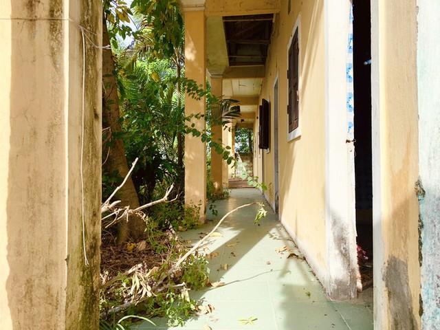 Cảnh hoang tàn ở khu du lịch biển Xuân Thành - Ảnh 9.