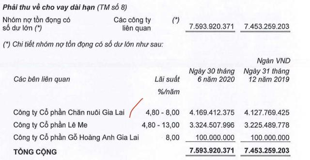 Chăn nuôi Gia Lai: Vốn chủ âm 5.300 tỷ đồng, HAGL sẽ chuyển đổi 5.866 tỷ nợ vay, phải thu sang cổ phần - Ảnh 1.