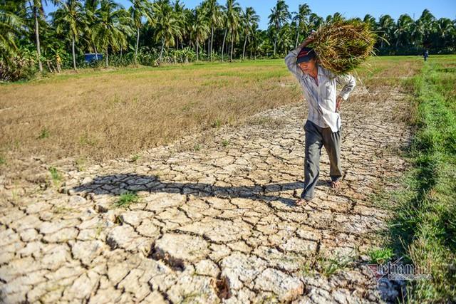 Thủ tướng: Không để người dân thiếu nước sinh hoạt trước nguy cơ hạn mặn nghiêm trọng - Ảnh 1.