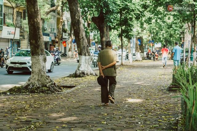Con đường cây huyền thoại ở Hà Nội lại phủ đầy lá vàng rồi, phải chăng là mùa thu sắp về? - Ảnh 15.