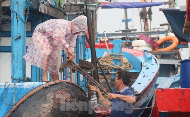 Người dân Đà Nẵng hối hả neo đậu, di dời tàu thuyền chống bão số 5 - Ảnh 11.