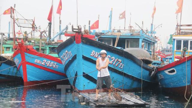 Người dân Đà Nẵng hối hả neo đậu, di dời tàu thuyền chống bão số 5 - Ảnh 13.