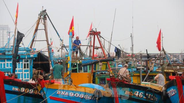 Người dân Đà Nẵng hối hả neo đậu, di dời tàu thuyền chống bão số 5 - Ảnh 15.