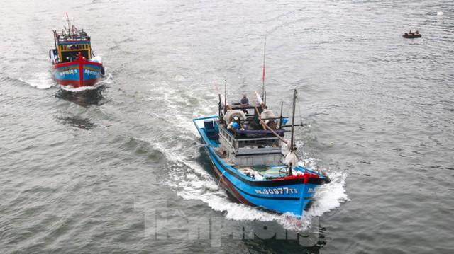 Người dân Đà Nẵng hối hả neo đậu, di dời tàu thuyền chống bão số 5 - Ảnh 16.
