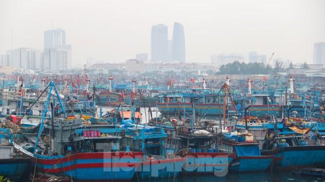 Người dân Đà Nẵng hối hả neo đậu, di dời tàu thuyền chống bão số 5 - Ảnh 9.