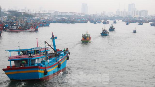 Người dân Đà Nẵng hối hả neo đậu, di dời tàu thuyền chống bão số 5 - Ảnh 10.