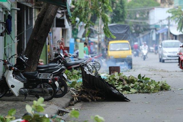 Cây ngã la liệt khiến 1 người chết và nhiều người bị thương, toàn tỉnh Thừa Thiên Huế mất điện sau khi bão số 5 đổ bộ - Ảnh 17.