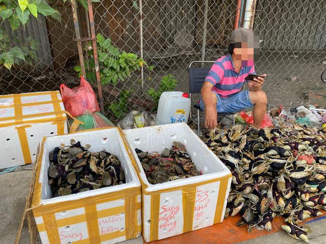 Thực hư cua Cà Mau 50.000 đồng/3 con bán đầy đường, bao ăn  - Ảnh 1.