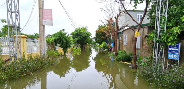 Sau bão, nhiều hộ dân vẫn bị cô lập trong biển nước, cột viễn thông cao cả trăm mét bị xô đổ - Ảnh 10.