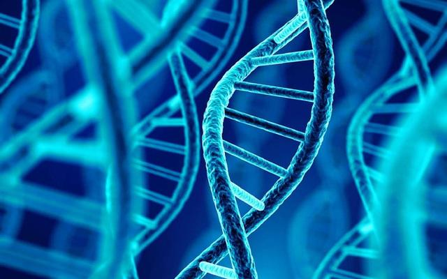Loại gen này có thể là nguyên nhân khiến phụ nữ mắc bệnh Alzheimer thường sống lâu hơn nam giới - Ảnh 2.