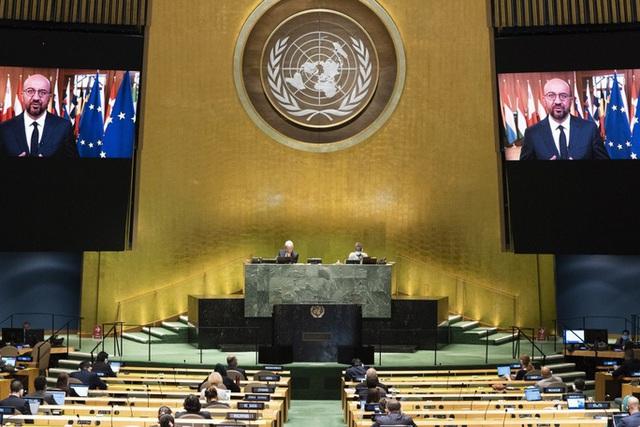 EU từ chối khéo kêu gọi của Trung Quốc ngay tại Liên Hiệp Quốc  - Ảnh 1.