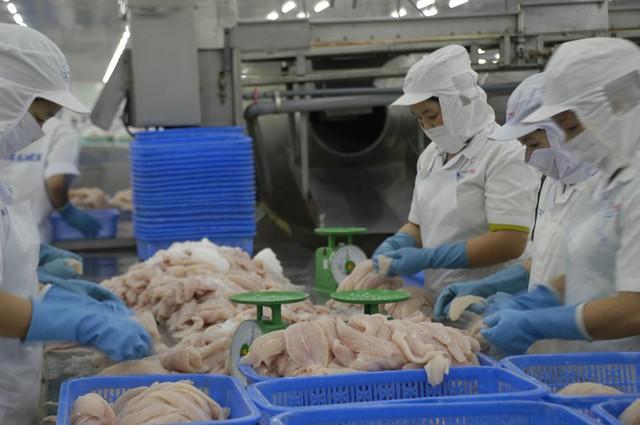 Đồng Tháp đưa cá tra ra Thủ đô Hà Nội tìm đường tiêu thụ - Ảnh 2.