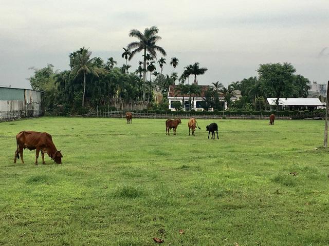 Hóc Môn kêu gọi đầu tư 23 dự án trên hơn 2.624 ha đất - Ảnh 1.