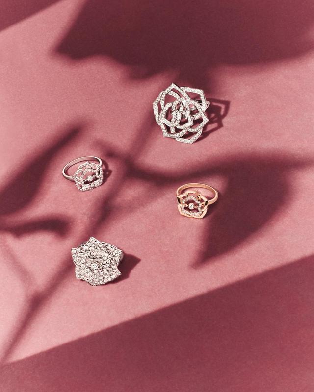 Chuyện ít biết về loài hoa hồng mang tên Piaget: Từ vẻ đẹp thiên nhiên hóa tác phẩm nghệ thuật tôn vinh sự vĩnh cửu - Ảnh 2.