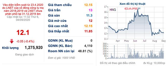 HAGL Agrico (HNG): Nửa đầu năm có lãi trở lại, cổ phiếu thoát khỏi diện kiểm soát từ ngày 7/9 - Ảnh 2.