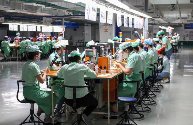 Kinh tế Ðà Nẵng đóng băng do dịch COVID-19 - Ảnh 1.