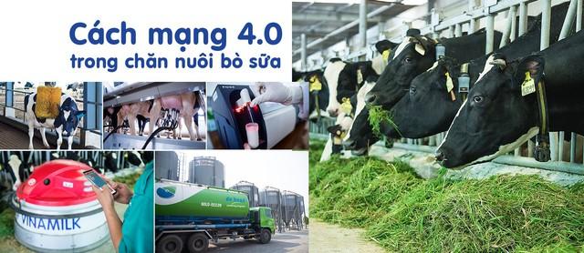 Đầu tư phát triển cả quy mô lẫn công nghệ, hệ thống trang trại của Vinamilk tăng trưởng ấn tượng - Ảnh 3.