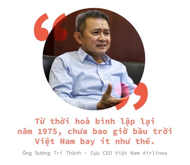 Hàng không Việt một năm bay trong bão - Ảnh 2.